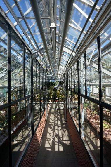 Botanischer Garten // Botanical garden, Greifswald