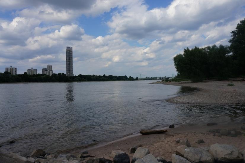 Rhein // Rhine