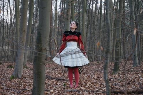 Rotkäppchen // Little Red Riding Hood